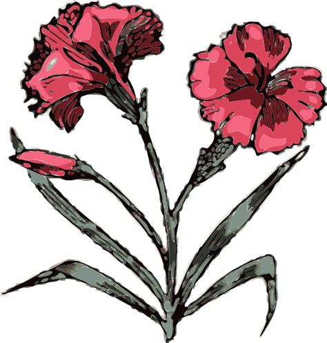 carnation flower tattoo cliparts co