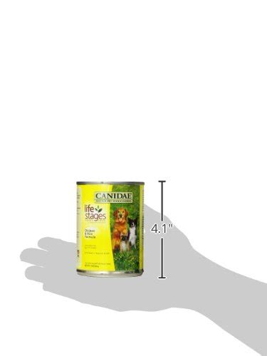 can dogs chicken broth canidae canned food chicken and rice formula in chicken broth 13 ounce can ebay