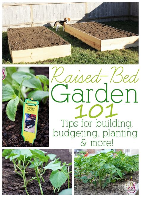 build a raised bed garden how to build a raised bed garden
