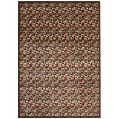 Bjs Area Rugs 25 Best Images About Home Reno On Pinterest Legends How To Paint And Futon