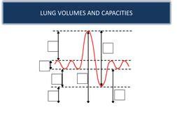 Lung Volumes And Capacities Interpreting A Spirometer Trace Gcse Pe By Franferrrari Teaching Pft Interpretation Template