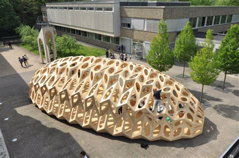 pattern and structure found in nature product design bowoos bionic research pavilion is inspired by marine