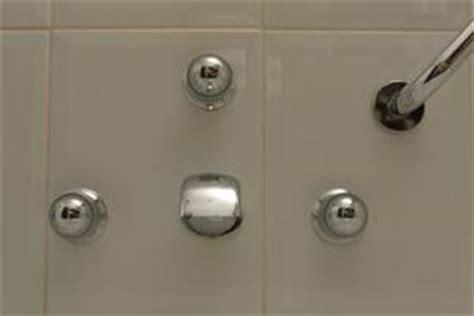vermi neri nella doccia sto e piccoli vermi neri vivono nella doccia