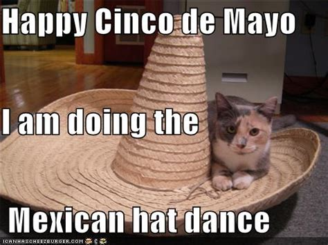 5 De Mayo Memes - mexican hat dance dash of wellness