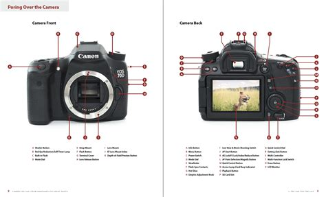 Tutorial Video Canon | canon 70d tutorial donttouchthespikes com