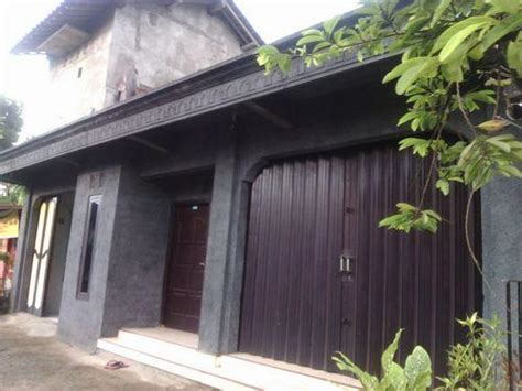 Tempat Jual Nanas Muda Di Semarang Jual Ruko Sewa Ruko Pasang Iklan Ruko