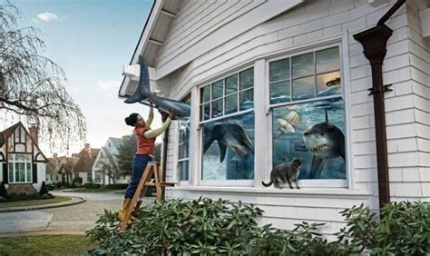 shark house sharks in the house random photo 15490985 fanpop