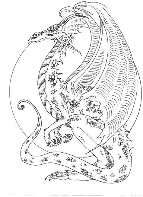 cute coloring pages for adults amy brown dragon adult colouring dragons lizards snakes