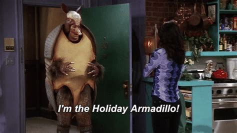 holiday armadillo gifs find share  giphy