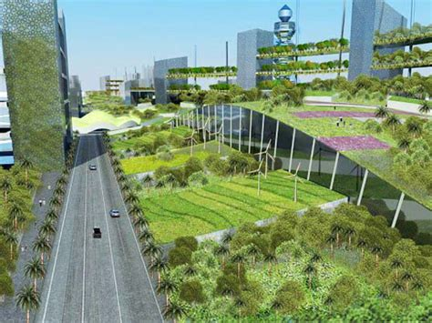 Food Garden City Ga by Extensive Brown And Green Roof Gardens Green Roofs