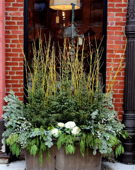 outdoor winter planter ideas 5th and state winter containers ideas for diy