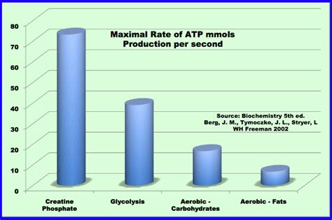 carbohydrates in atp production scientific strength 3 things you need to