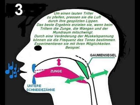 Wie Lerne Ich Pfeifen by 5 4 2014 Pfeifen Weltrekord Ccm T At Doovi