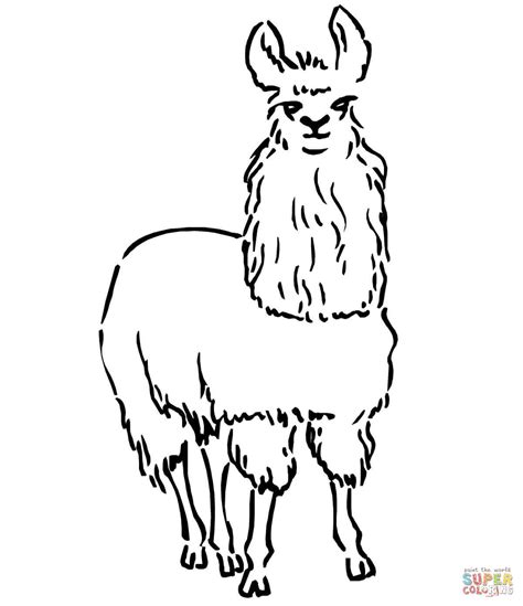 Llama Coloring Pages south american llama coloring page free printable coloring pages