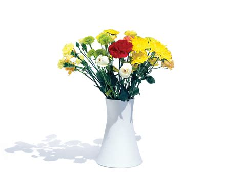 A Vase With Flowers by Keeping Your Environment Fresh With Vase And Flowers In Decors