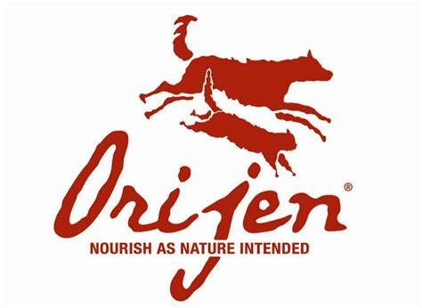 orijen food reviews orijen food review