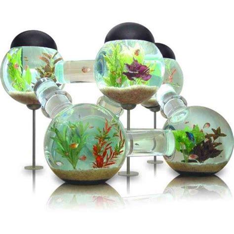 Petco Aquarium Decor by Aquarium Decorations Petco Petco Bookshelf Aquarium