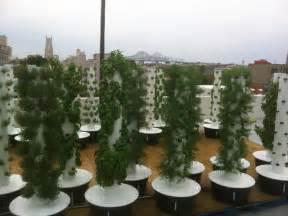 Vertical Aeroponic Garden Sustainable Aeroponic Rooftop Garden Created Above
