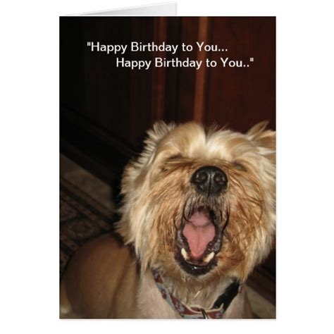 dogs singing happy birthday quot happy birthday to you quot singing card zazzle