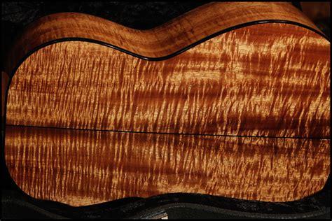 woodworking hawaii koa wood hawaii wood boring insects