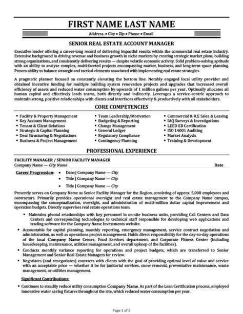 automotive account manager resume sample best format