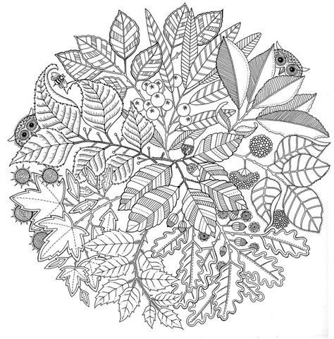 leaves coloring pages for adults adult coloring page autumn mandala autumn 1