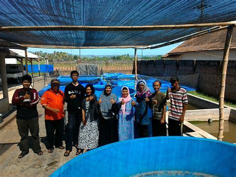 Jual Kolam Terpal Di Malang usaha ternak lele pusat info usaha 2015 usaha ternak lele