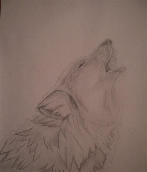 imagenes a lapiz de lobos imagen de lobos a lapiz imagui