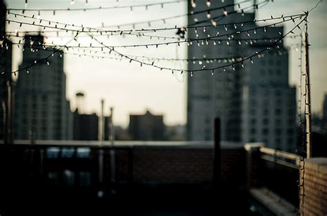 Rooftop Party Brooklyn Flickr Photo Sharing String Lights Nyc