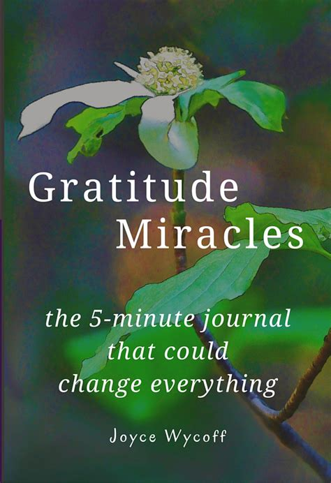gratitude journal she believed so she became books joyce wycoff everyday gratitude and a