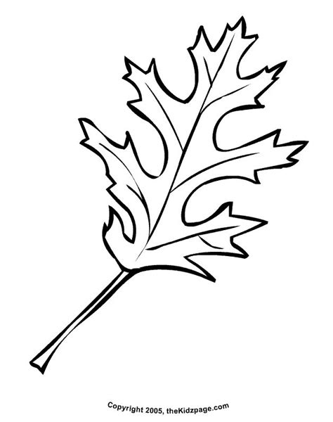 coloring pages for leaves 25 unique autumn leaf color ideas on maple