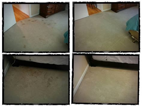 atlanta upholstery cleaning the hal show carpet cleaning atlanta upholstery