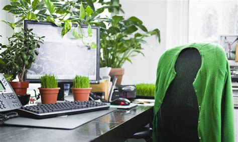 plant on desk green power office plants make you more productive