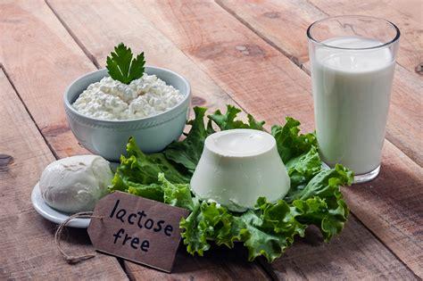 alimenti senza lattosio e glutine senza glutine e senza lattosio oltre 4 500 prodotti per