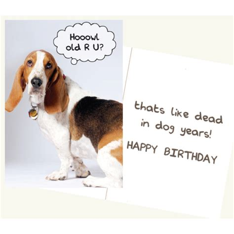 printable birthday cards dog lovers dog speak hoowl old r u birthday card goldfingers gifts