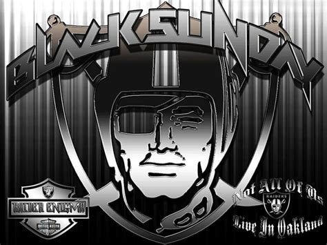 Black Sunday Raiders Fans Ukuran S 761 best images about everything raiders on oakland raiders football and