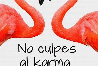 no culpes al karma 8467041587 no culpes al karma de lo que te pasa por gilipollas laura norton paperblog