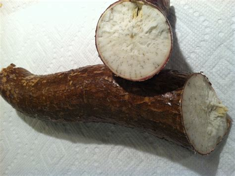 yucca root vegetable yucca root the health benefits of this looking root