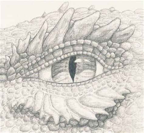 coloring pages of dragon eyes 37 best images about clipart dragons on pinterest baby