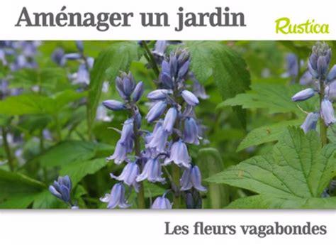 Legumes Qui Poussent Vite by Des Fleurs Qui Poussent Vite