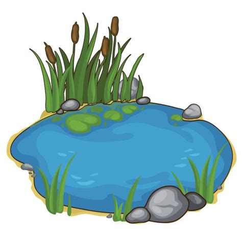 mare clipart royalty free pond clip vector images illustrations