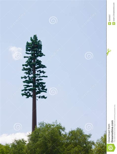 camouflaged cell phone tower stock image image