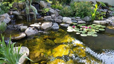 Aquascape Nj by Fish Ponds Pond Filtration Pond Contractor New Jersey