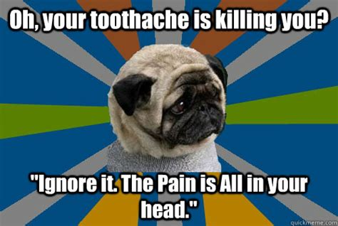 Toothache Meme - oh your toothache is killing you ignore it the pain is a