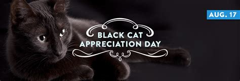 national black day 2017 national black cat appreciation day august 17 national today