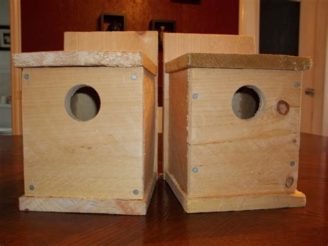 woodworking from home diy decorative birdhouses ideas