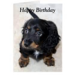 dachshund puppy photo birthday card zazzle