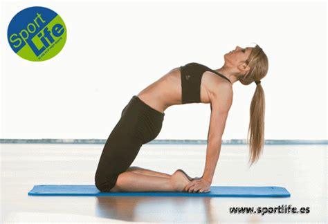estiramientos cadenas musculares jorge ramon gomariz pdf ejercicios que mejoran tu salud muscular fitness sportlife