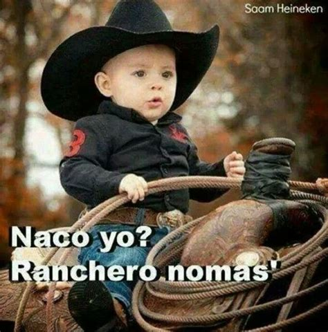 imagenes perronas con frases rancheras ranchero nomas frases chistosas pinterest