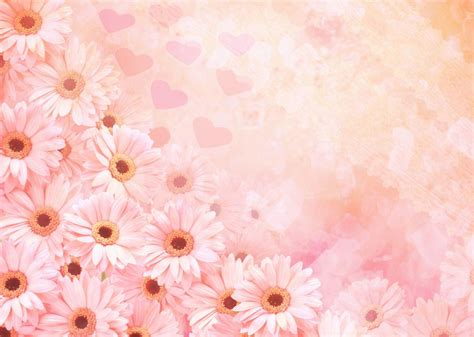 Imagenes Flores Fondos   fondos flores 175 183 183 el rinconcito de aly
